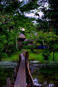 Amazon Nehri' nde yaşamlar, Kolombiya ve Peru