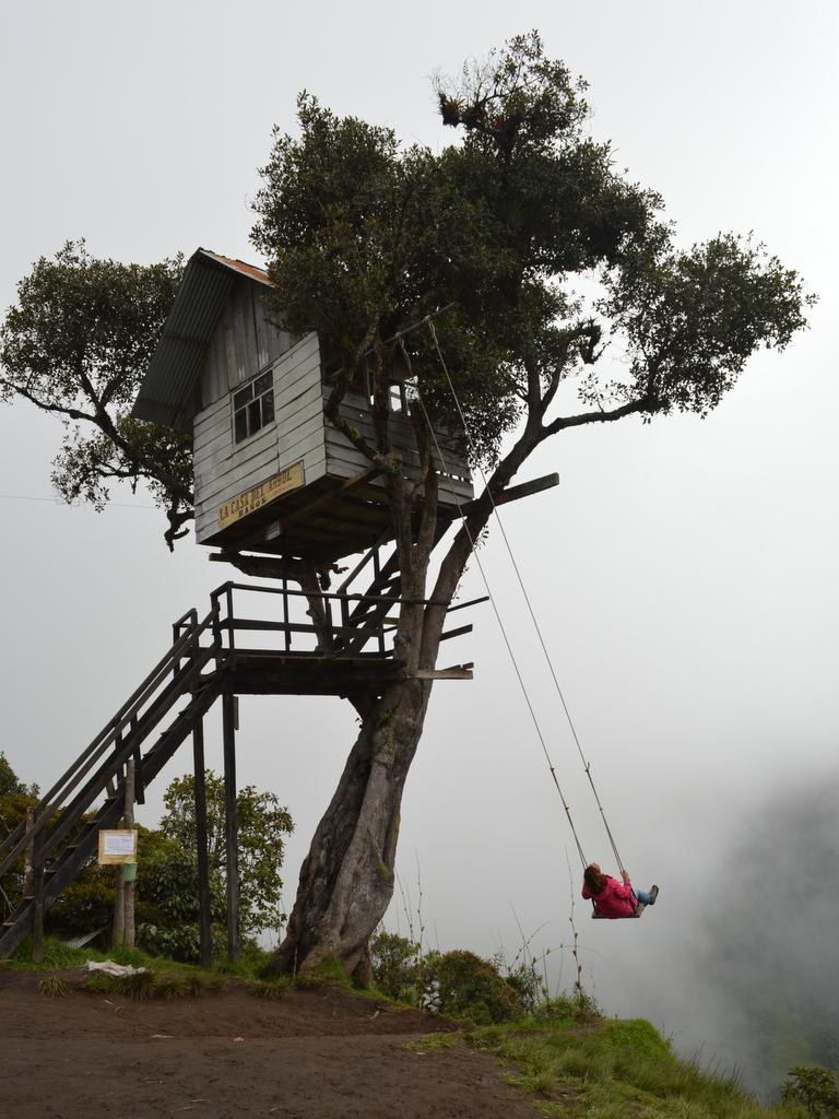 tatligezgin, ekvador