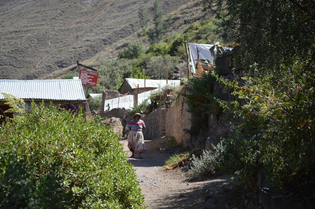 san juan de chuccho, colca canyon