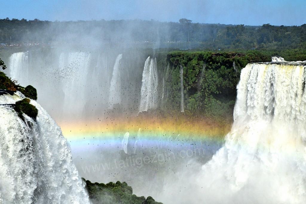 Iguazu şelaleleri hakkında